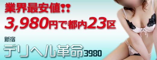 デリヘル革命3980